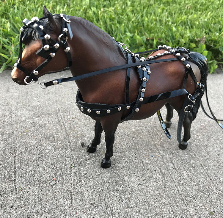driving harness on pony